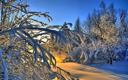 寒冷冬天发朋友圈的好句子 特别冷的冬天怎么发