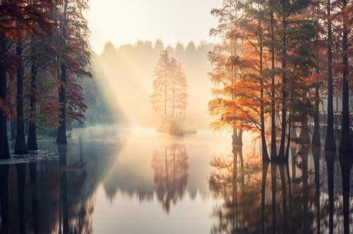 治愈系早安心语说说 朋友圈最温馨的早安心语